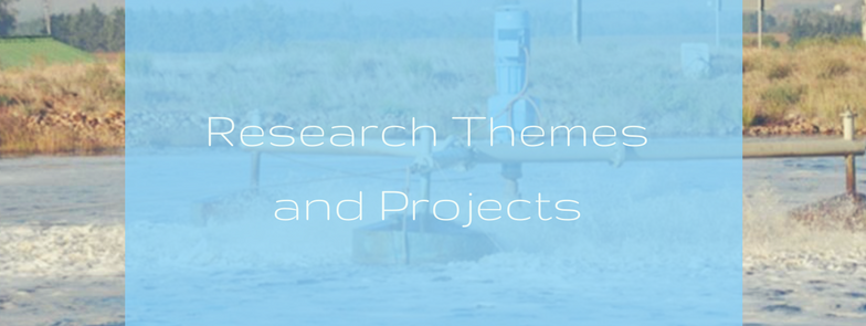 research themes and projects.png