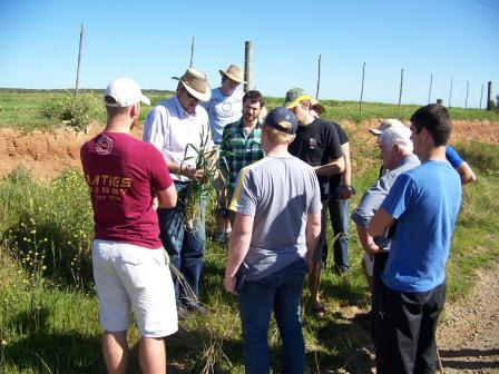 Soil Tour 2011 Overberg students wheat (comp).jpg