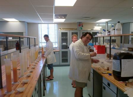 postgrads in lab 2014.jpg