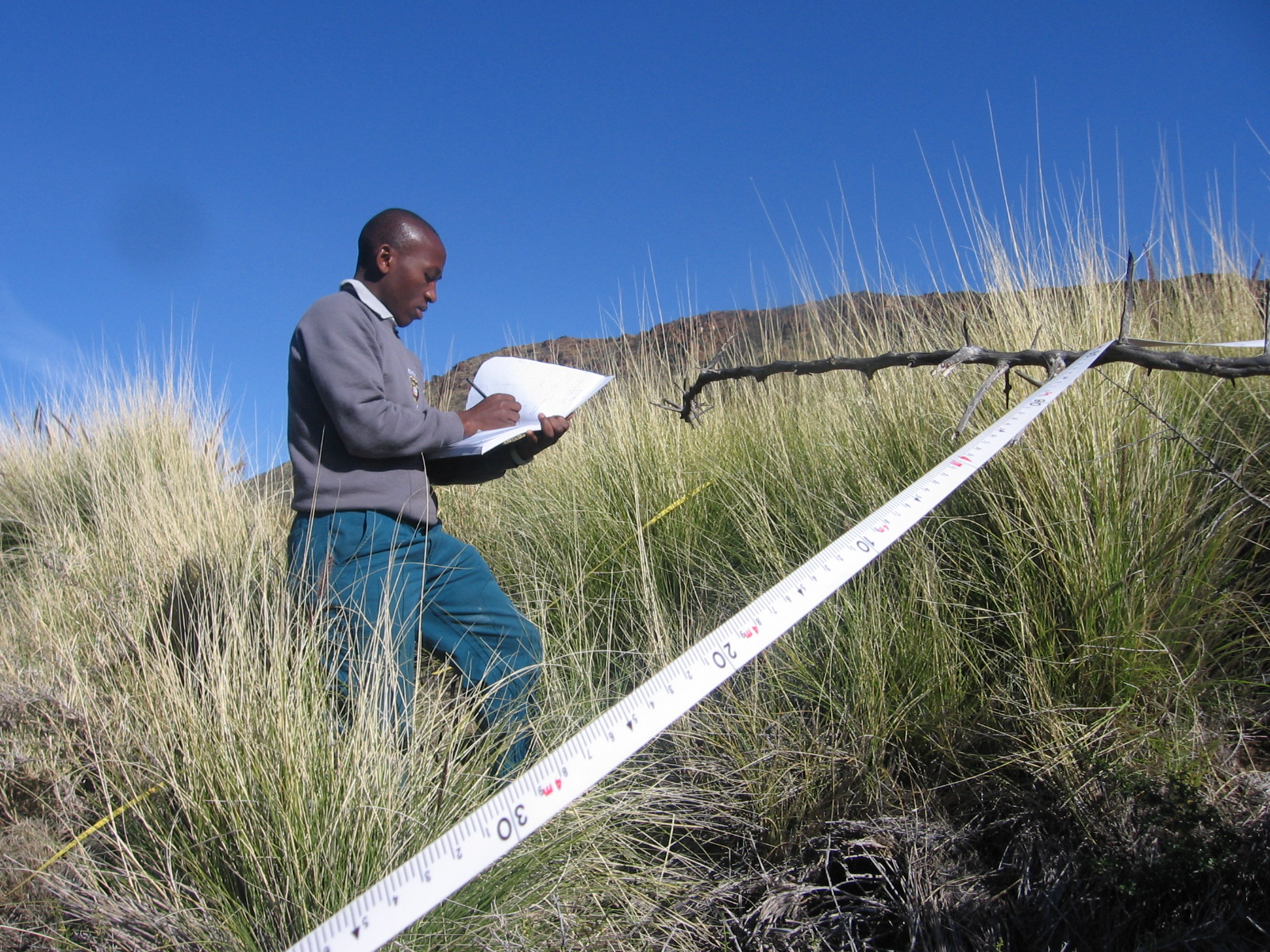 Sebataolo Rahlao recording fountain grass near Karoo National Park (photo by Sue Milton).jpg