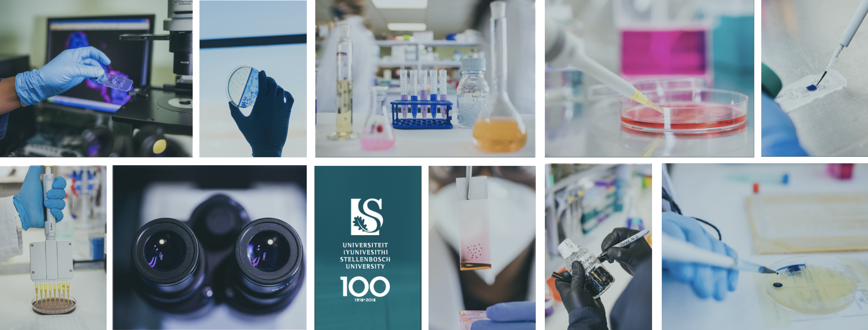 Our_Lab.png